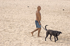 walk the dog on rhe beach