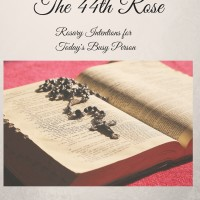 Introducing my New Book!  The 44th Rose