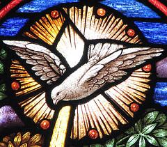Holy Spirit dove window