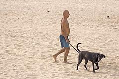 walk the dog on rhe beach