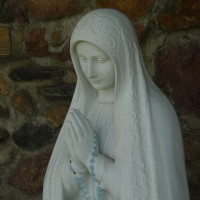 Mary's Rosary Promise #1